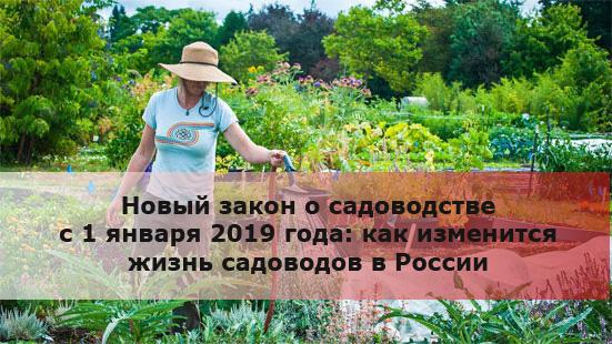 Новый закон о садоводстве с 1 января 2019 года: как изменится жизнь садоводов в России