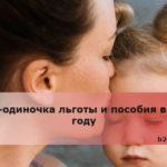 Мать-одиночка льготы и пособия в 2019 году