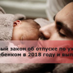 Новый закон об отпуске по уходу за ребенком в 2018 году и выплаты