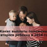 Какие выплаты положены за второго ребенка в 2018 году