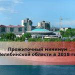 Прожиточный минимум в Челябинской области в 2018 году