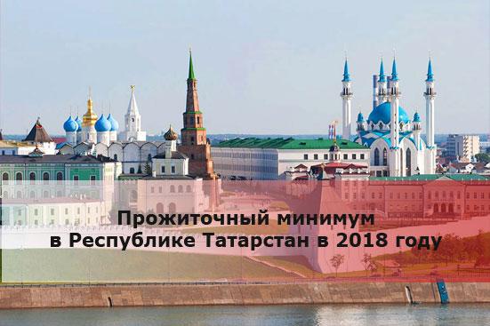 Прожиточный минимум в Республике Татарстан в 2018 году