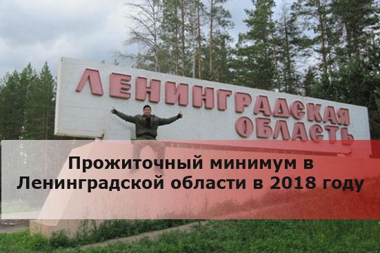 Прожиточный минимум в Ленинградской области в 2018 году