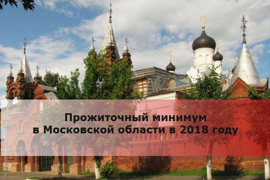Прожиточный минимум в Московской области в 2018 году