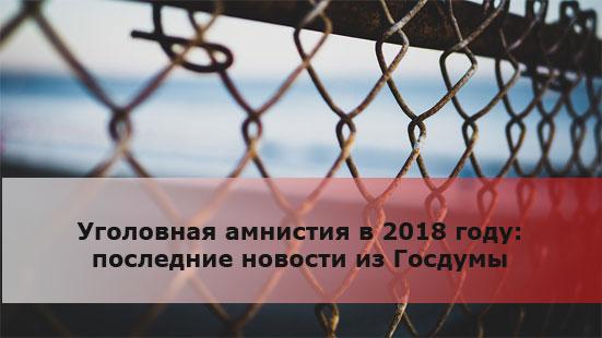 Уголовная амнистия в 2018 году: последние новости из Госдумы