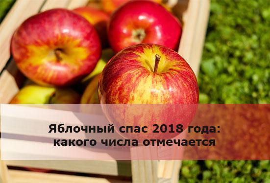 Яблочный спас 2018 года: какого числа отмечается