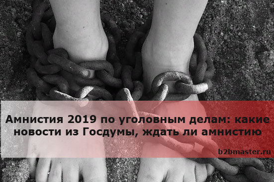 Амнистия 2019 по уголовным делам какие новости из Госдумы, ждать ли амнистию