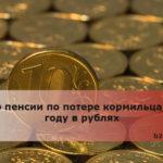 Размер пенсии по потере кормильца в 2019 году в рублях