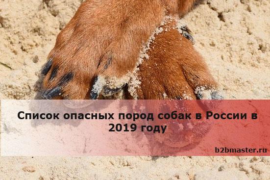 Список опасных пород собак в России в 2019году