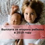 Выплата за второго ребенка в 2019 году